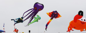 Rogallo Kite Festival - Outer Banks Events