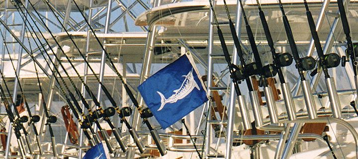 Outer Banks fishing tournament - Pirates Cove