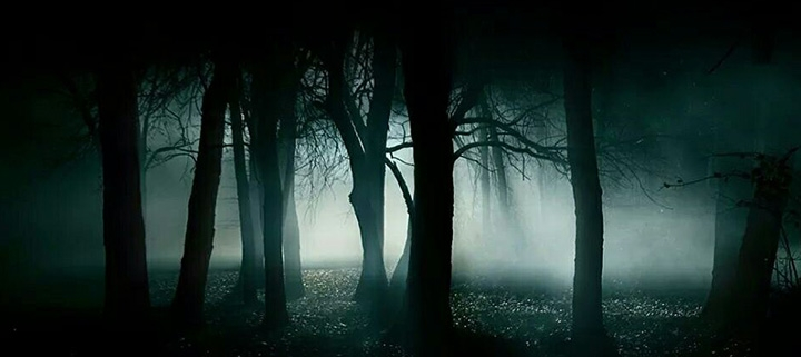 Outer Banks events - Halloween - Wanchese Woods haunted trail